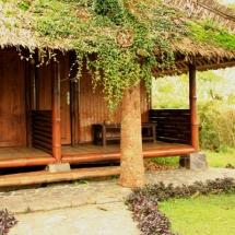 01_bambu