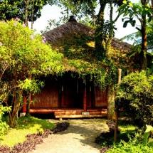 02_bambu