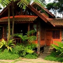 Kisampang Image 2020-12-11 at 3.58.54 PM